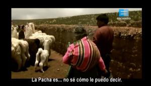 pacha3